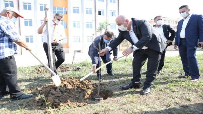 Darıca'da okul bahçelerine fidan dikiliyor
