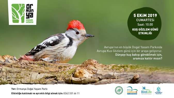 Kuş gözlemcileri Ormanya'da buluşacak