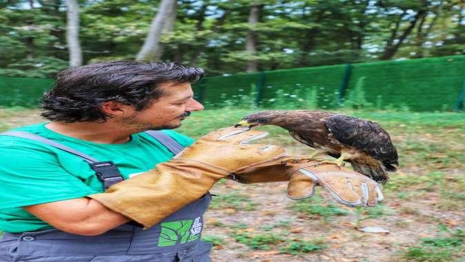 Ormanya'da ziyaretlere bir günlük ara