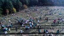 2500 Fidanla Gölcük'ten Geleceğe Nefes Verildi