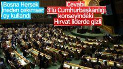 Bosna Hersek'in Kudüs'te çekimser kalmasının nedeni