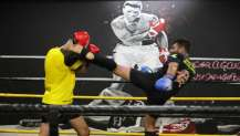 Darıca Muay Thai Turnuvası'na ev sahipliği yapacak