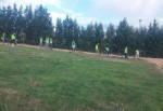 Dilovası'nda park ve bahçeler bakımdan geçiriliyor