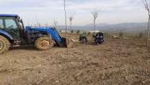 Kandıra Kent Ormanı ağaçlandırılıyor