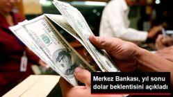 Merkez Bankası Yıl Sonu Dolar Beklentisi, 3,86 TL'ye Yükseldi